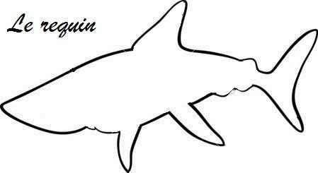 depositphotos_46742267-shark-animal-cartoon-coloring-book.jpg