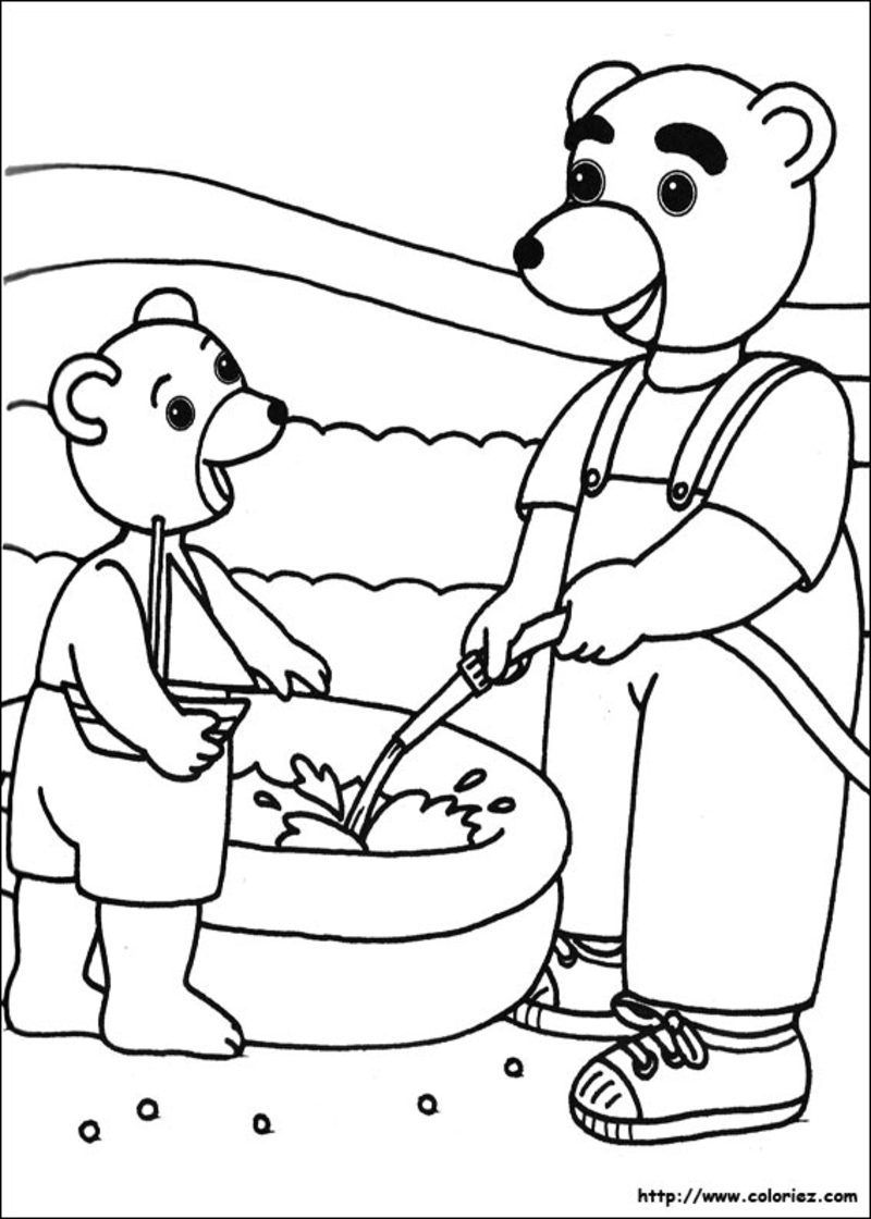 coloriage petit ours brun - Page 3